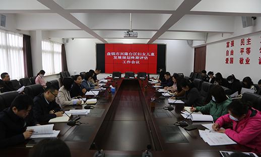 我区召开妇女儿童发展规划终期评估工作会议...